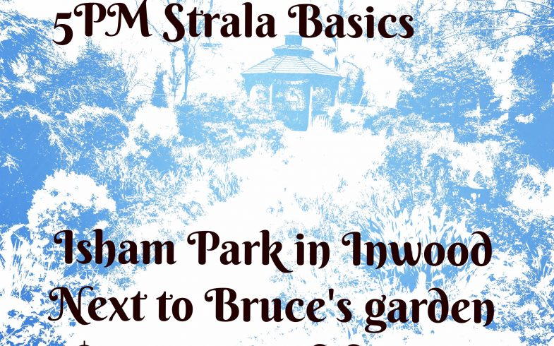 Yoga @ Bruce's Garden • This Saturday @5pm