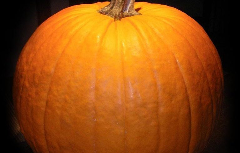 …Sneak~A~Boo…!! • Monday October 31 @3pm