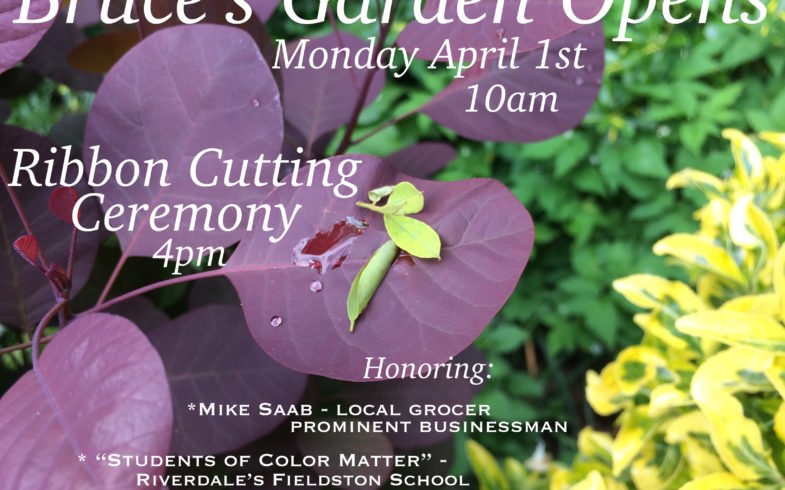 Garden Reopens! Monday April 1st @10am • Ribbon Cutting Ceremony @4pm •