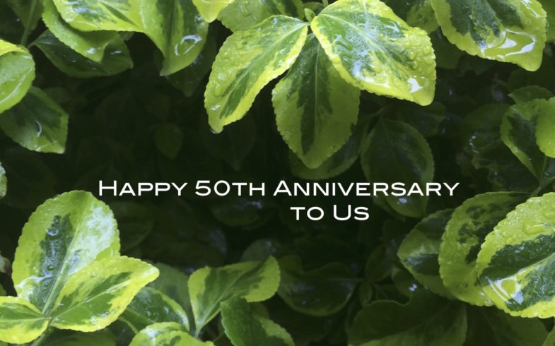 Bruce Reynolds Garden is 50 !! • Reopens April 1, 2020